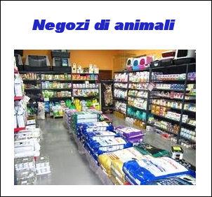 Negozi animali domestici for Negozi arredamento como